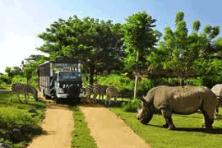safari  park & kecak