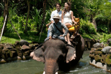 bali elephant ride and white water rafting
