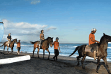 HORSE RIDING saba bay